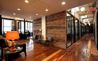 SOLVES In Sight: Why Did WeWork Not Work?